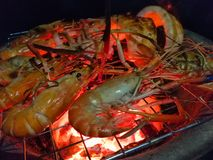 El camarón tiene quemadura fotos de archivo