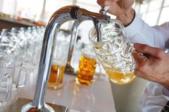 El camarero vierte una cerveza espumosa ligera en una taza grande durante el partido de Oktoberfest Foto de archivo libre de regalías