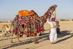 El camello y los hombres indios participan en festival del desierto Jaisalmer, Rajasthán, la India Fotos de archivo