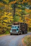 El camión de registración viene abajo del camino Fotografía de archivo libre de regalías