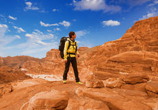 El caminante de la mujer con la mochila disfruta de la visión en desierto fotos de archivo libres de regalías