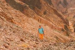 El caminante de la mujer con la mochila disfruta de la visi?n en desierto imágenes de archivo libres de regalías