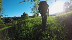 El caminante de siguiente del backpacker sirve caminar en bosque salvaje caminando o emigrando aventura en aire libre ponga verde metrajes