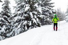 El caminante del invierno en el bosque nevoso blanco que emigra con caminar pega fotografía de archivo