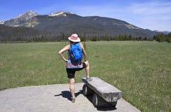 El caminante femenino mira la visión imagen de archivo libre de regalías