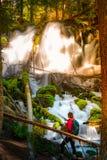 El caminante que mira Clearwater se cae composición de la vertical de Oregon imagenes de archivo