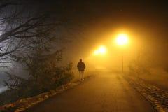El caminante solitario en una niebla brumosa cubrió la trayectoria Tennessee Imagen de archivo