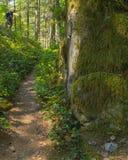 El caminante sube los cantos rodados del granito Foto de archivo libre de regalías