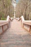 El caminar abajo de las escaleras Fotografía de archivo