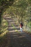 El caminar abajo de un carril sombrío del país Imagenes de archivo