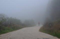 El caminar abajo del camino en la niebla Imagen de archivo libre de regalías