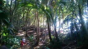 El caminar abajo a la playa del Caribe fotos de archivo libres de regalías
