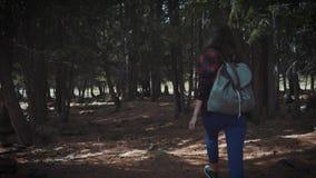 El caminar adolescente del inconformista sano activo en bosque corre a través de un bosque de hadas oscuro que llama con usted almacen de metraje de vídeo