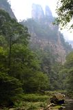 El caminar alrededor del parque en el área escénica de Wulingyuan Novicios cada Foto de archivo libre de regalías
