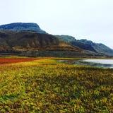El caminar aunque un campo hermoso de la caída con vistas a las montañas imagen de archivo