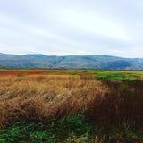 El caminar aunque un campo hermoso de la caída con vistas a las montañas foto de archivo libre de regalías