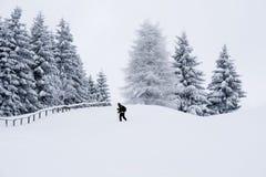 El caminar con los zapatos de la nieve Imagen de archivo