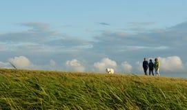 El caminar con un perro - 3 amigos en un prado en Rugen imágenes de archivo libres de regalías