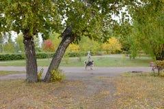 El caminar con un perro en el parque de la ciudad de Omsk Foto de archivo libre de regalías