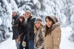 El caminar de Forest Happy Smiling Young People de la nieve del grupo de los amigos al aire libre Fotografía de archivo libre de regalías