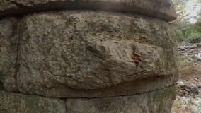 El caminar de la muchacha y la albañilería antigua del primer, un panorama de piedras gigantes arruinaron el teatro romano en las metrajes