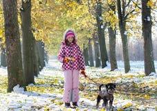 El caminar de la muchacha y del perro Fotos de archivo