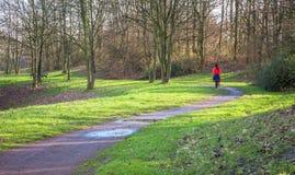 El caminar de la mujer del sendero del parque foto de archivo libre de regalías