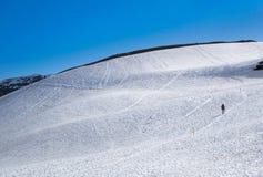 El caminar de la nieve en el Parque Nacional Glacier Fotos de archivo libres de regalías