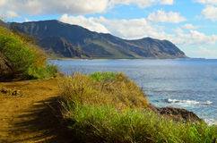 El caminar de Oahu Imagen de archivo