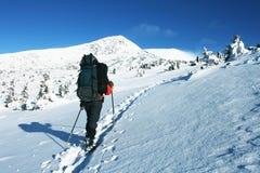 El caminar del invierno Imagenes de archivo