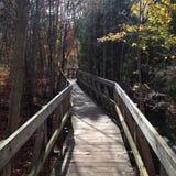 El caminar del puente Foto de archivo libre de regalías