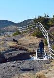 El caminar del rastro de la costa este del hombre y del perro imagen de archivo