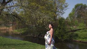 El caminar embarazada, el funcionamiento de la mujer del viajero joven, dando vuelta alrededor y disfruta de su tiempo libre del  almacen de metraje de vídeo