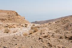 El caminar en área de mar muerta en Israel Foto de archivo libre de regalías