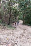 El caminar en Costa Rica imagen de archivo