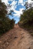El caminar en Costa Rica imagen de archivo libre de regalías