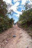 El caminar en Costa Rica foto de archivo libre de regalías