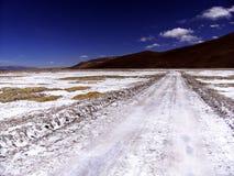El caminar en el medio del antofalla Salar Fotos de archivo