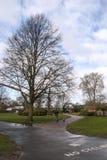 El caminar en el parque Imagenes de archivo