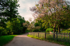 El caminar en el parque de la ciudad Fotos de archivo libres de regalías