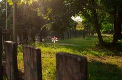 El caminar en el parque de la ciudad Fotografía de archivo libre de regalías