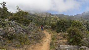 El caminar en el parque nacional de Chirripo Imagenes de archivo