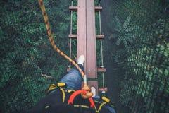 El caminar en el puente en árbol superior imágenes de archivo libres de regalías