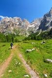 El caminar en el valle de Contrin Fotos de archivo