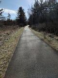 El caminar en enero imagen de archivo libre de regalías