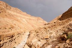 El caminar en la aventura de piedra de Oriente Medio del desierto Foto de archivo libre de regalías