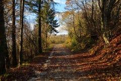 El caminar en la montaña Foto de archivo