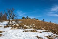 El caminar en la nieve 3 Foto de archivo