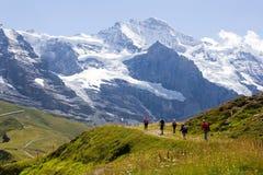 El caminar en las montañas suizas con las vistas de las montañas de Jungfrau Foto de archivo