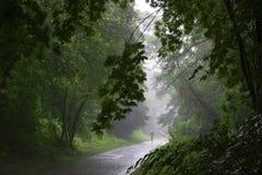 El caminar en lluvia Imágenes de archivo libres de regalías